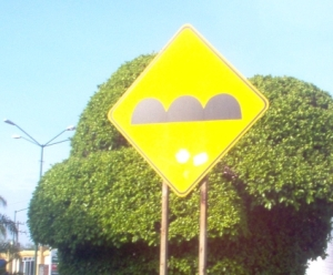 This sign indicates speed bumps, however they may not be the helmet variety as advertised.
