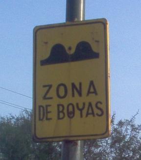 boya sign
