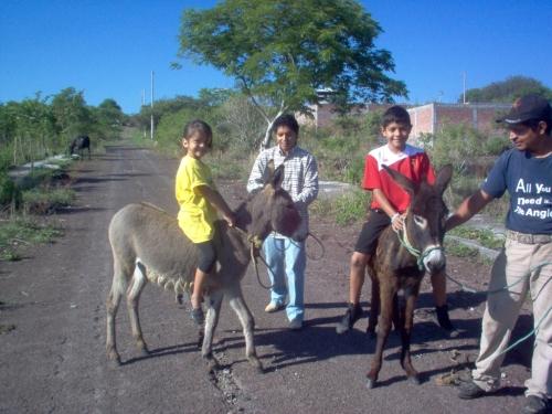 donkey riders