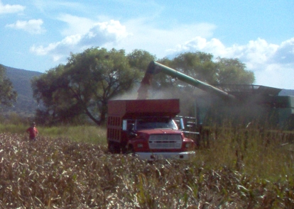 thresher dumping