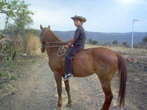 My not so little cowboy