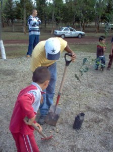 Planting a tree on Father's Day.