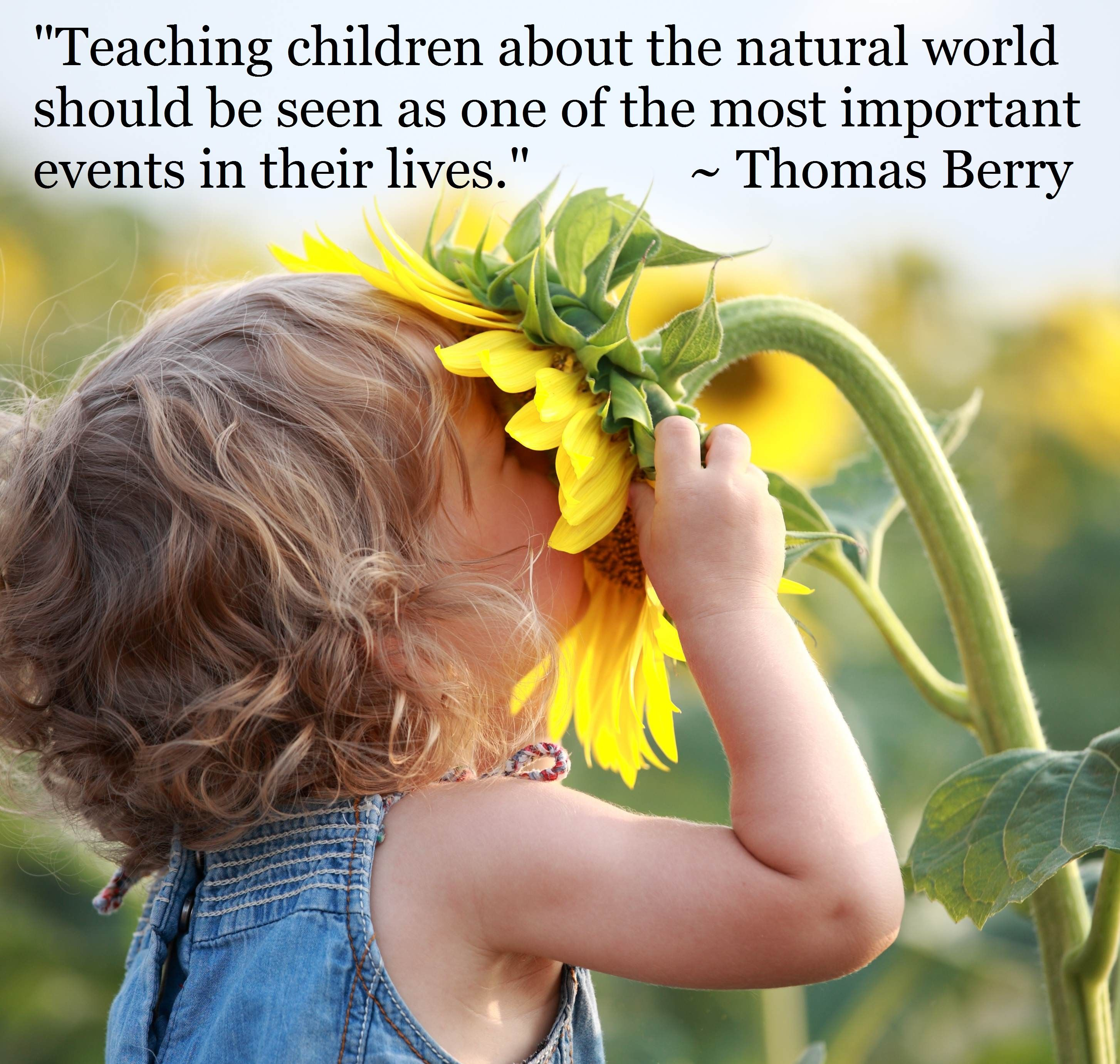 lifelong learning surviving natural