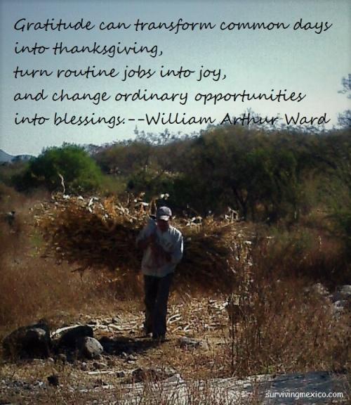 gratitude-work