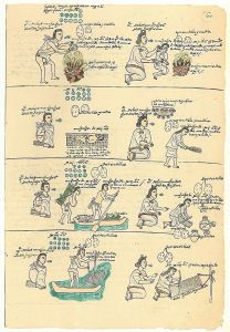 800px-Codex_Mendoza_folio_60r