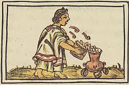 pozole codex