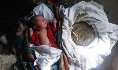 baby-placenta