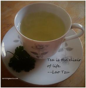 cilantro-tea-cup-elixir
