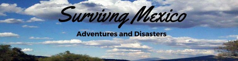 Surviving Mexico | Adventures and Disasters
