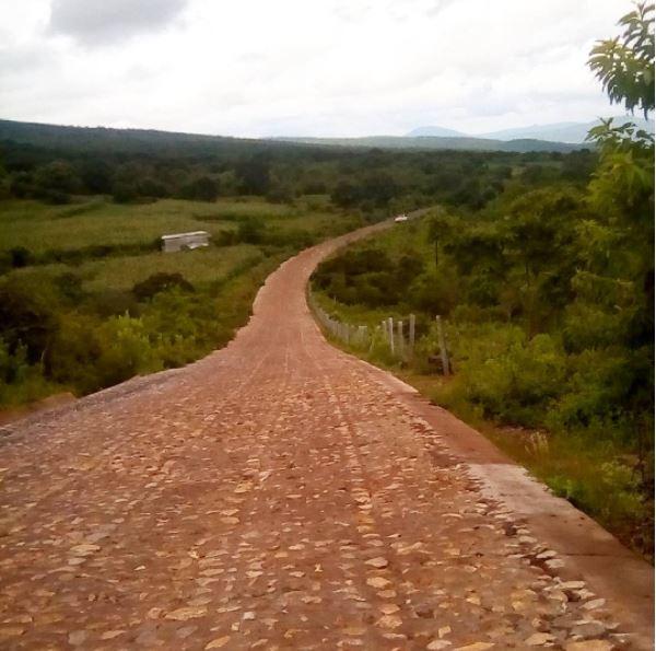 amoles road