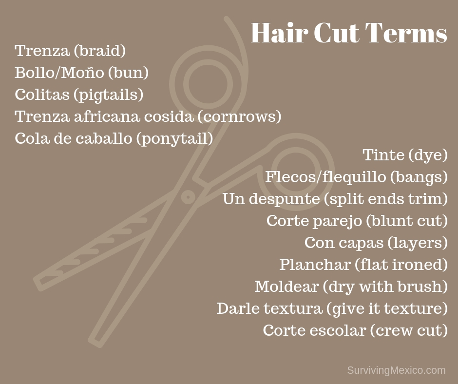 Hair Cut Terms