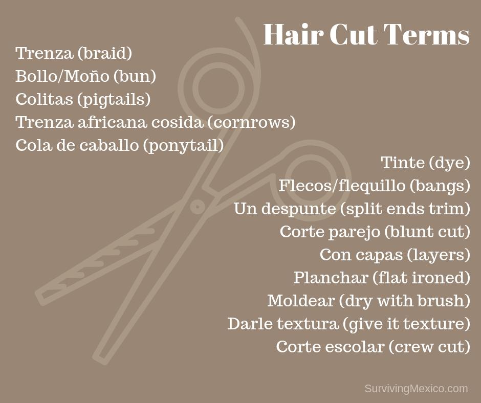 Hair Cut Terms