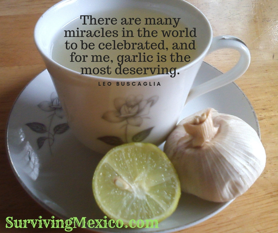 There are many miracles in the world to be celebrated, and for me, garlic is the most deserving..jpg