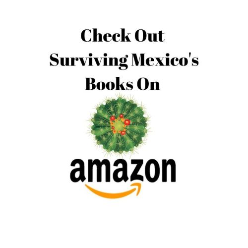 Check Out Surviving Mexico's Books on