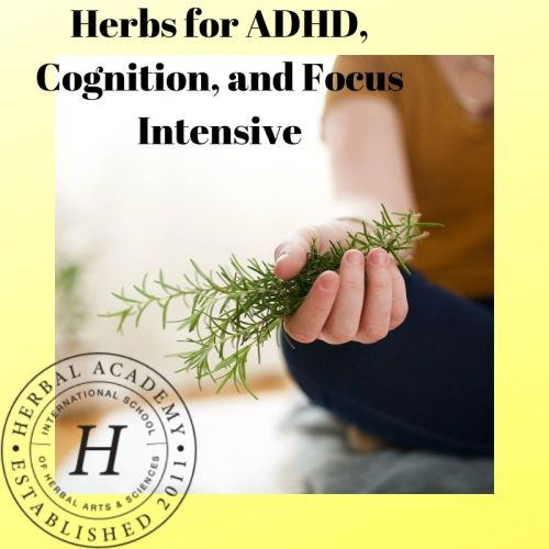 Herbs for ADHD, Cognition, and Focus Intensive